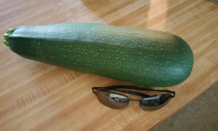 Cooking with a Brain Tumor: Giant Zucchini Edition
