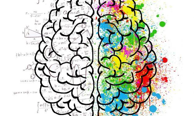A Brain Mystery