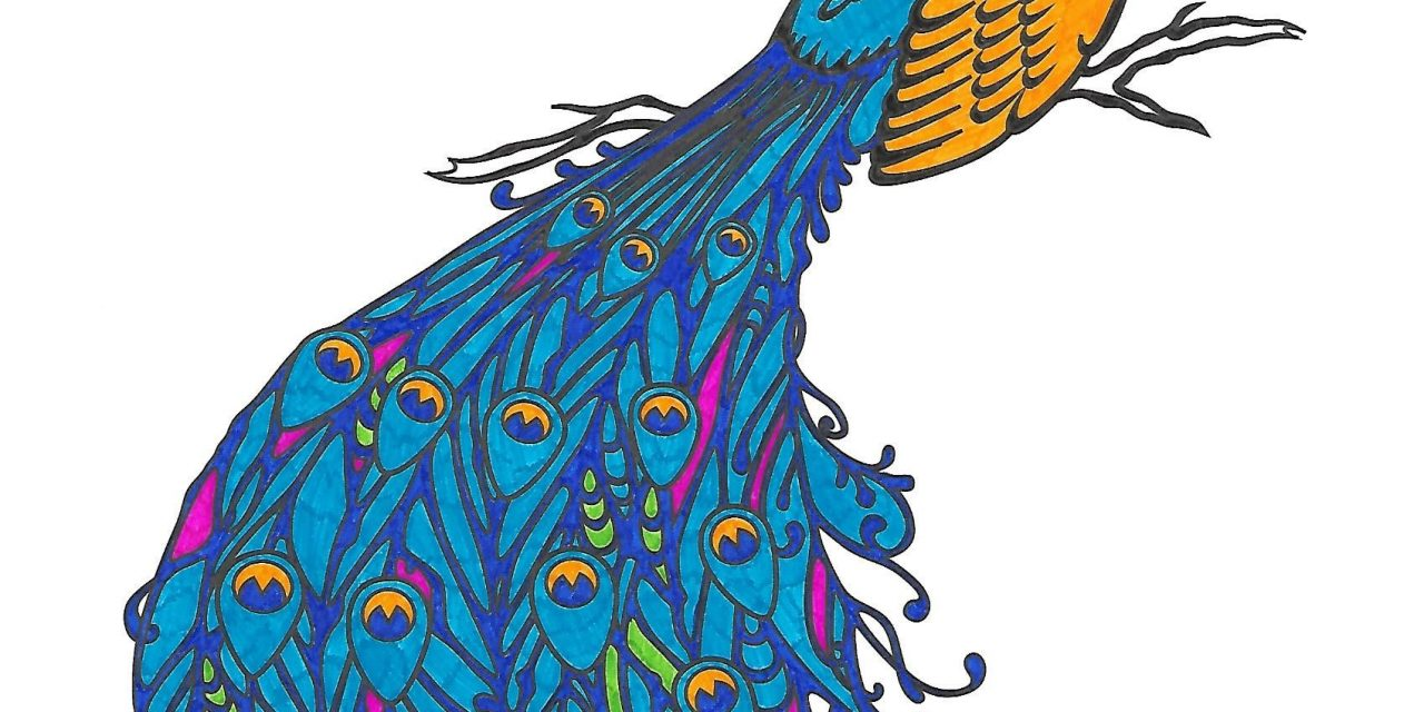 Adult Coloring Book Page: Peacock