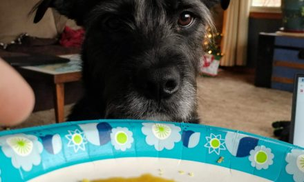 You Gonna Eat That?