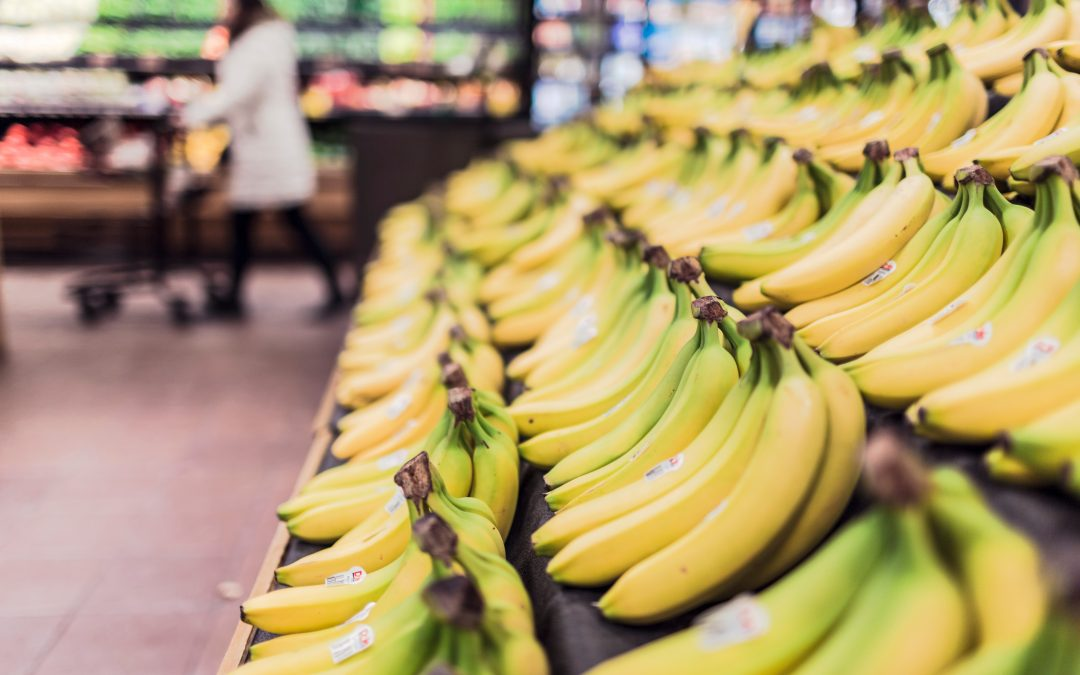 Oh, SNAP! Signing up for Food Assistance Benefits