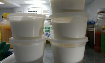 How To Make Instant Pot Yogurt | Homemade Yogurt Recipe