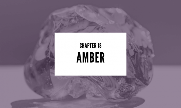Chapter 18: Amber