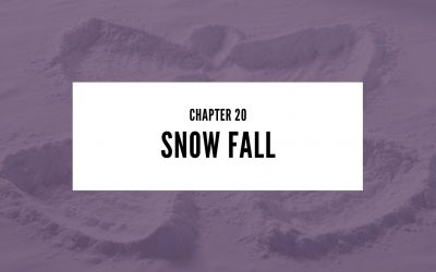 Chapter 20: Snow Fall