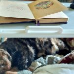 Featured image for chemo week 4: Izzy sleeping under a bed desk while I Zentangle